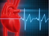 «Здоровое ТВ»: все о здоровом образе жизни